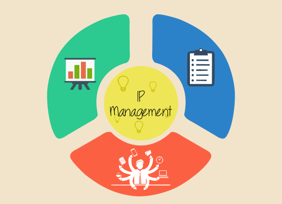IP Management Page